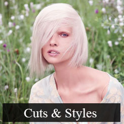 Haircuts & Styles