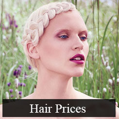 Hair Prices