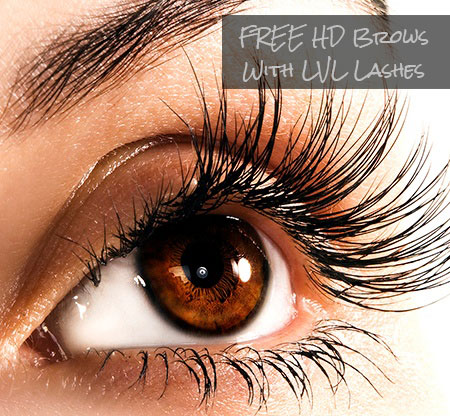FREE HD Brows With LVL Lashes