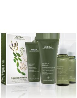 AVEDA - Botanical Kinetics Skin Care Set for dry/oily skin