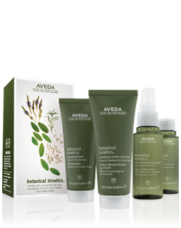 AVEDA - Botanical Kinetics Skin Care Set for dry/oily skin