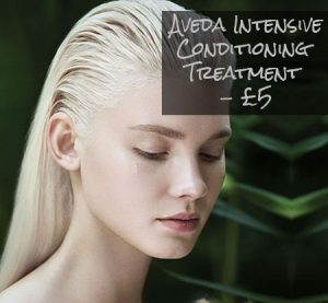 aveda-intensive-conditioning-treatment-5